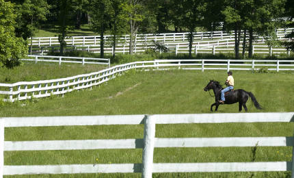 Conyers Farm Equestrian Estate