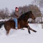 Learning Horse Riding: A Complete Guide