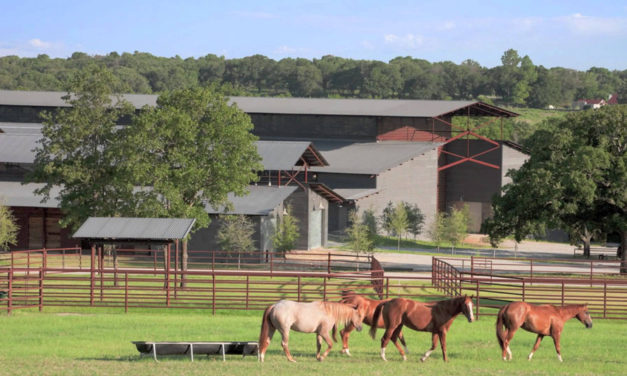 Most Popular Horse Ranches in US