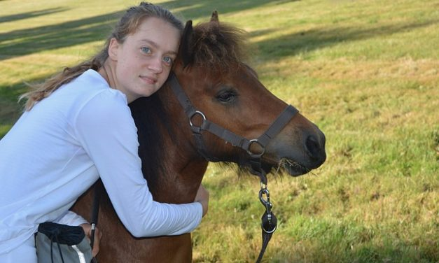 Horse Riding Basics For Beginners: How To Get Started And Stick With It