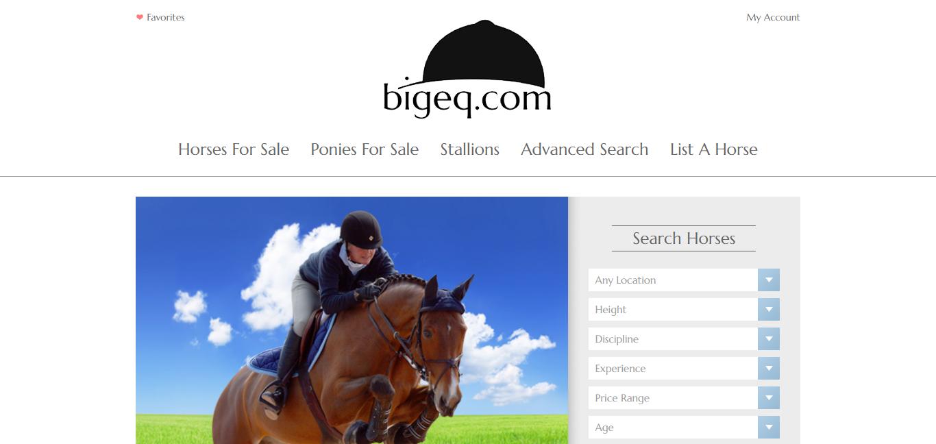 Bigeq.com homepage