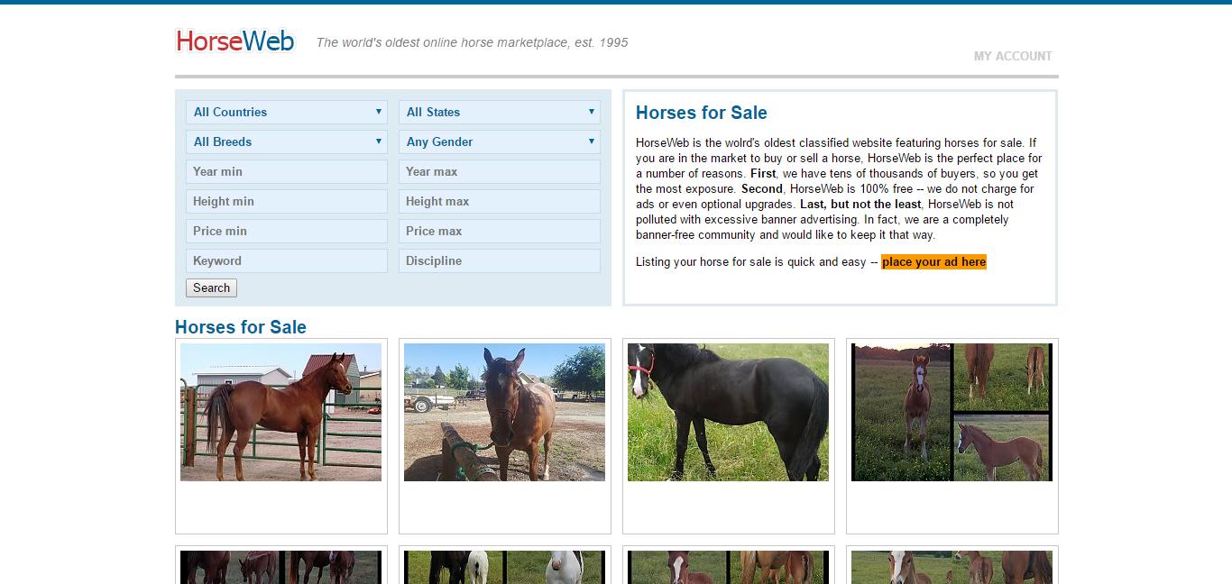Horseweb.com homepage