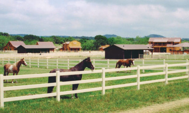 The Best Horse-Riding Locations In The US